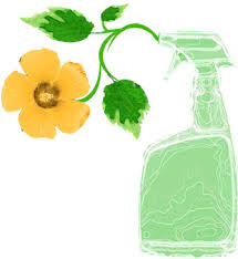 Green Cleaning: Natural DIY Cleaners for your Entire Home