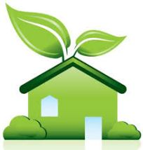 Tips for Creating An Environmentally Friendly Home